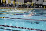 <p>LSU swimmer on Jan. 30, 2015, in the Natatorium for the Houston, Rice, Tulane and LSU swim meet.</p>