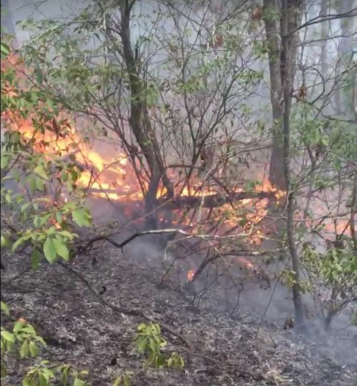 Sugar Hill Fire at 180 acres: Firefighters battle another blaze on Monday morning