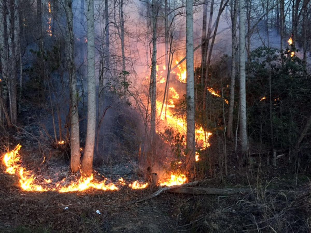 Dobson Knob Fire 550 Acres 10 Percent Contained