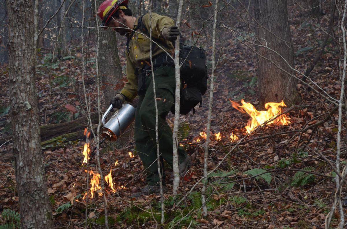 Latest update on Clear Creek Fire