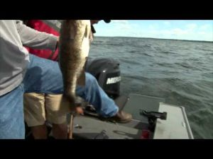 Tony Roach Fishing Report - 8/2/13