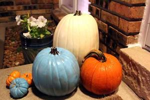 Teal pumpkin for food allergy awareness