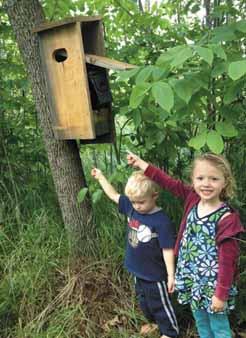 Kids locate geocaching box.