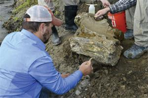 Mammoth Fossil Recovered from American Falls Reservoir