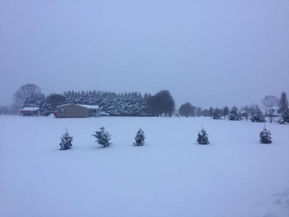 Snow In Iredell From Readers State News