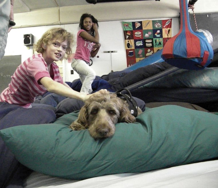 Rescued dog finds work at NCSD - Morganton.com | The News Herald: News