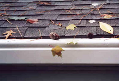 One Stop Home Improvement Shop Gutter Guards