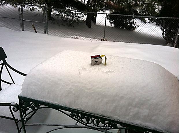 thomas snow 2).jpg