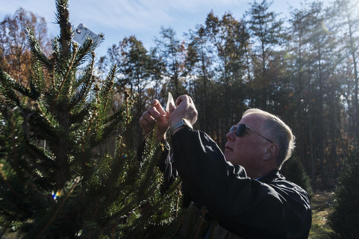 Retired Appomattox sheriff grows holiday spirit | Botany | newsadvance ...