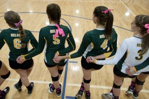 Nelson volleyball team finishes season without Alexis