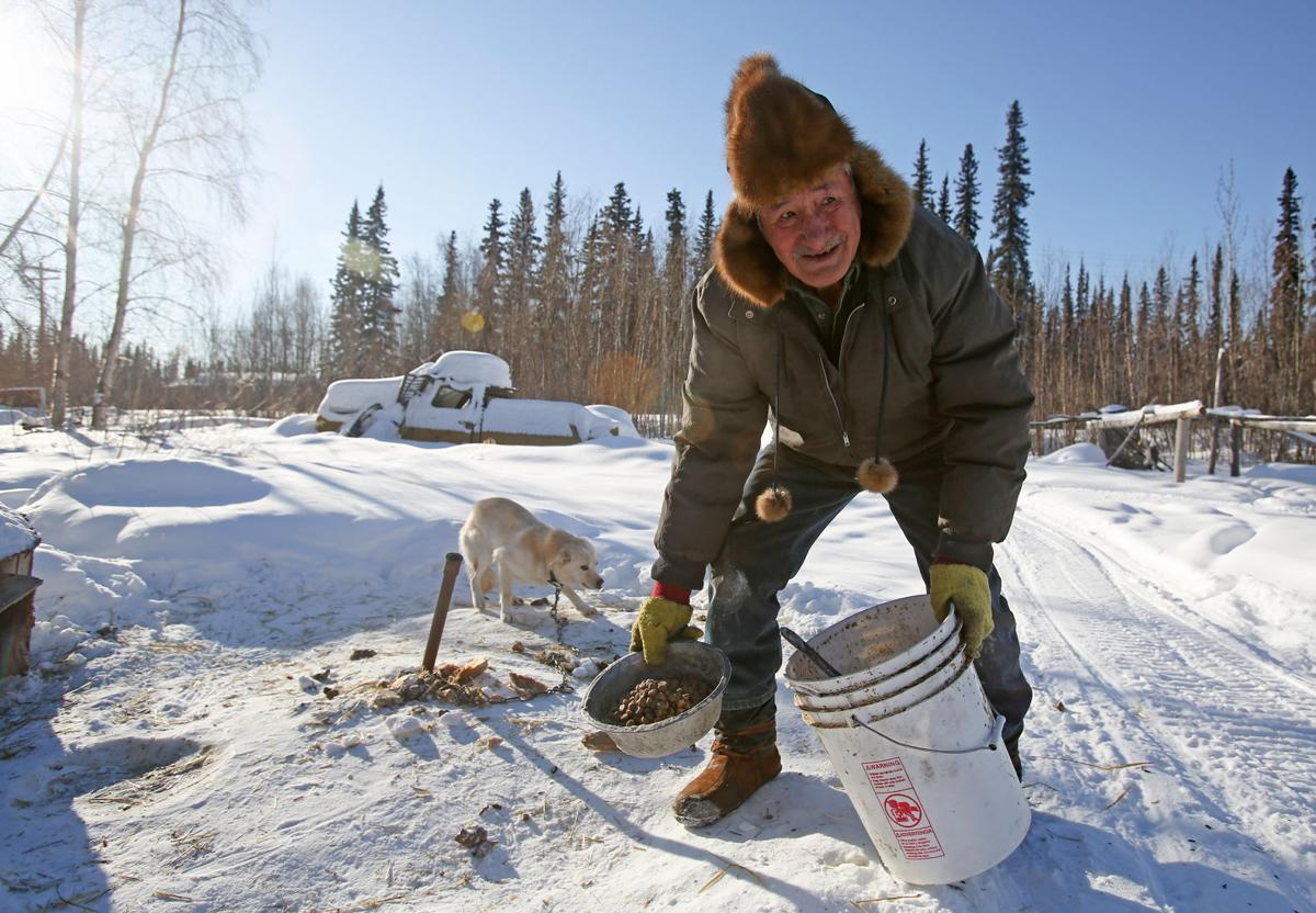 Mushing a flickering flame in interior alaska villages - Interior community health center fairbanks ...