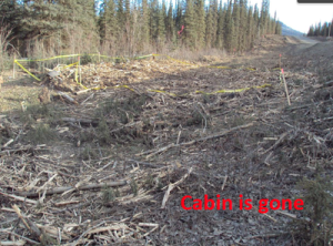 Dalton Highway brush clearing cleared old cabin