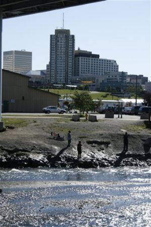 Alaska's best fishing hole? Check downtown Anchorage