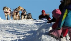 2014 Iditarod Trail Sled Dog Race
