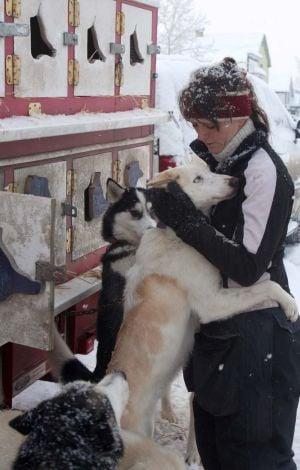 Fairbanks Sled Dog Rescue
