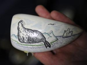 Strict rules await travelers with walrus ivory, baleen