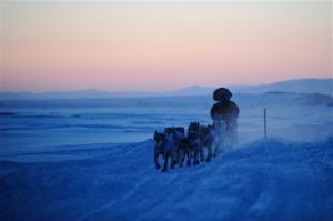 Berkowitz, King, Cadzow see early exit from 2012 Iditarod