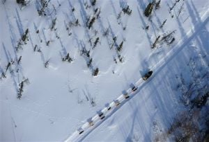 Aliy Zirkle retakes lead in Iditarod sled dog race