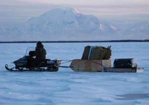 <p>We often use our Yamaha Bravo snowmachine for hauling loads that don't fit well in a dogsled. Here, Julie is hauling hay, window plastic and a drum of gas home from the runway where it arrived from Fairbanks.</p>