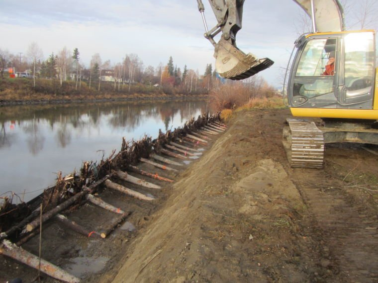 Project Uses Root Wad Technique To Restore Bank Of Chena