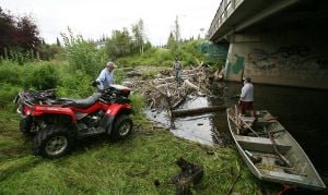 Volunteers work on clearing log jam from Noyes Slough at Aurora Drive bridge