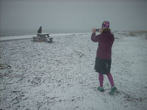 Spring break at Homer Spit