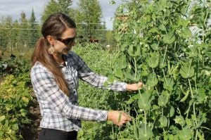 Heidi Rader has big dreams for Little Alaskan Garden