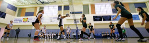 Hutchison spikers sweep Delta Junction