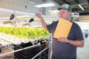 Microgreen farmer has a vision for the Alaskan diet