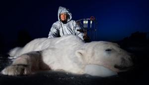 Fairbanks bow hunter bags polar bear in northeastern Canada