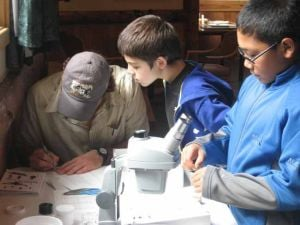 Kids get up close with bugs in Denali