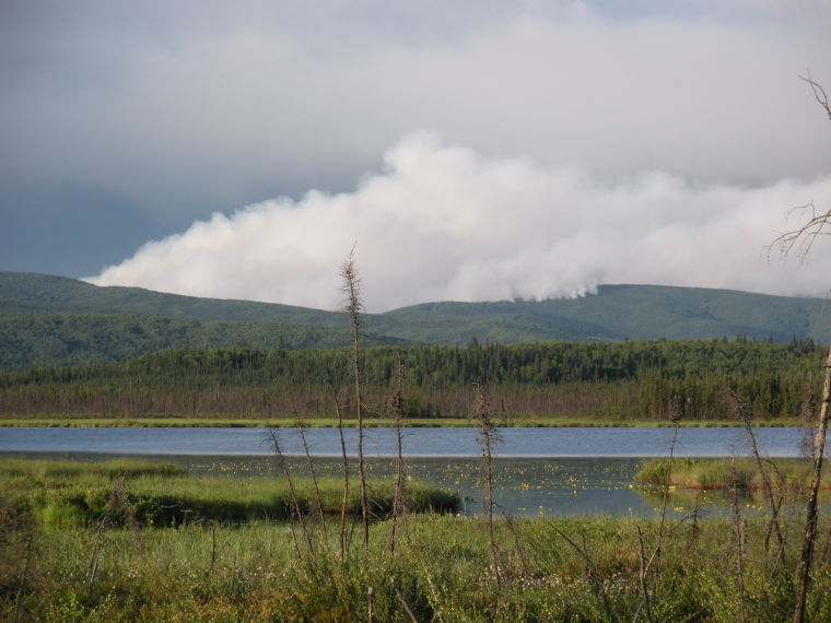 Stuart Creek Fire