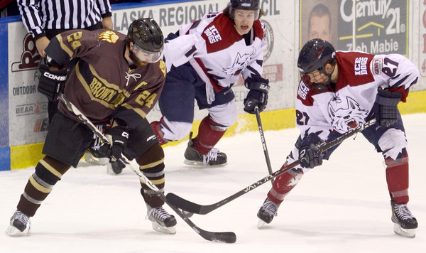 Ice Dogs strike with vengeance at Brown Bears