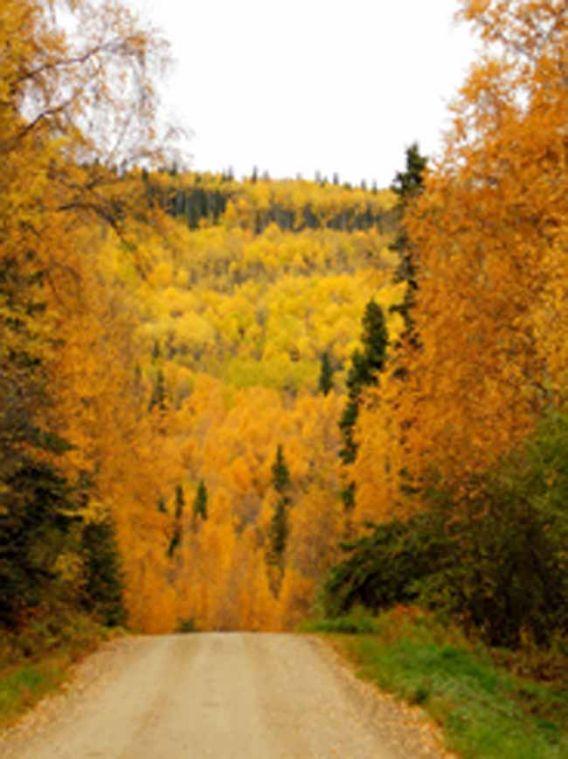 Autumn in Alaska - My Best Photos