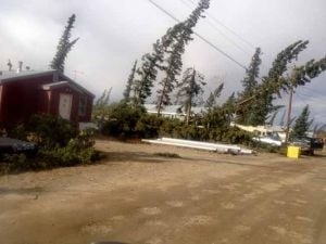 Winds clocked at 114 mph in Interior Alaska storm; Tanacross cleanup continues