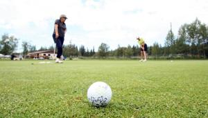 Tee Off On Interior Alaska Golf Courses Fairbanks Daily News Miner Visitors Guide