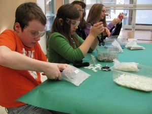 Nordale Elementary School students celebrate seasons with mosaic project