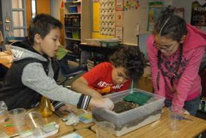 Water table study