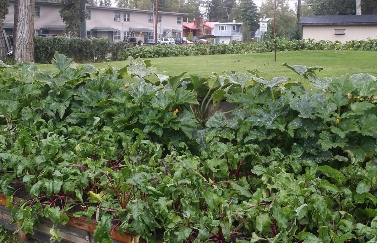Prepare your soil for gardening season gardening for Preparing soil for vegetable garden
