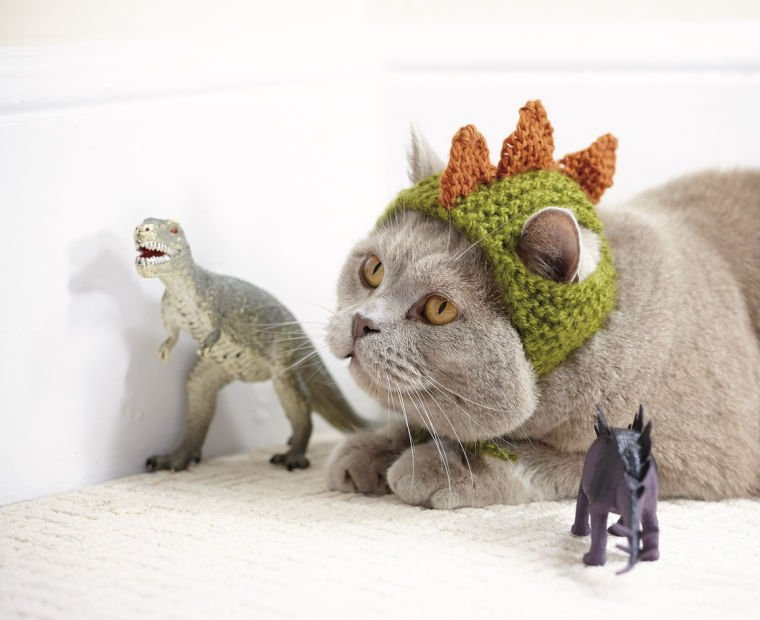 Crafts-Cats in Hats