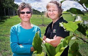 <p>Master gardener Linda Castor of Dakota City, Nebraska, left, and University of Nebraska-Lincoln Extension educator Carol Larvick pose for a photo at South Sioux City Community Orchard in South Sioux City, Nebraska, on Wednesday, Aug. 19, 2015.</p>