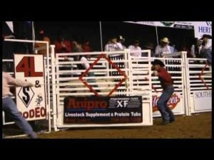 2014 Three Rivers Invitational Bull Ride