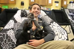 8th-grader deemed hero for rescuing kittens