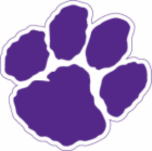 PREP LACROSSE: Lady Tigers drop season finale to North Forsyth