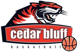 GIRLS BASKETBALL: Ider rallies past Cedar Bluff, 60-57