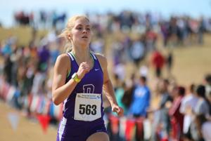 CROSS COUNTRY ALL-AREA: Ward's efforts pay off with top runner award