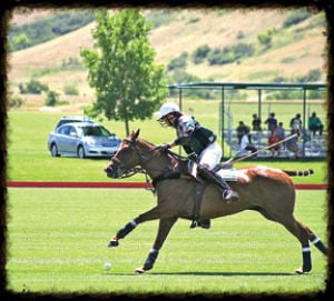 <p>Polo matches begin in September at Bendabout Farm in McDonald, Tenn.</p>