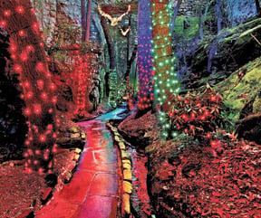 Rock city 39 s enchanted garden of lights opens nov 22 - Rock city enchanted garden of lights ...