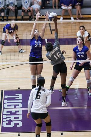 VOLLEYBALL: Lady Tigers fall at home