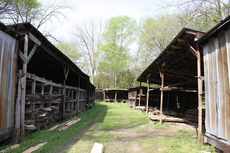 Vann Cherokee Cabin Restoration Northwest Georgia News News